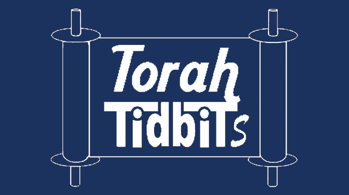 Torah Tidbits: Weekly Torah Publication in English