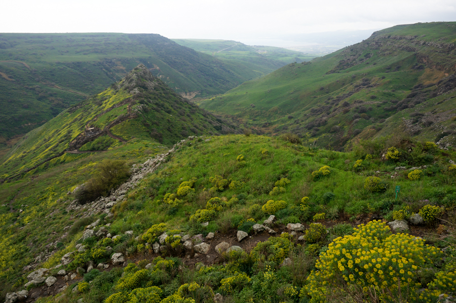 Golan Retreat, Hispin-The Hope of 2000 Years